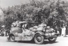 Ford Melon A