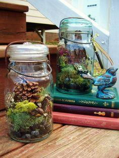 Canning jar terrariums