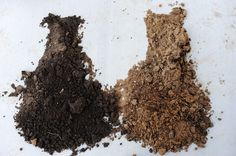 All about dirt - good to know for gardening