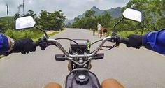 Riding a motorbike through Vietnam! Check out my article for 'An Idiot's Guide To Riding Through Vietnam By Motorbike' so you too can ride through the mountains, the beaches and experience the most incredible scenery! #travel #travelling #traveling #vietnam #asia