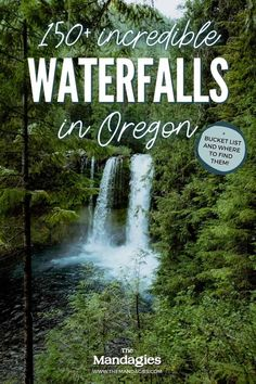 There are so many waterfalls in Oregon to explore, there's one to see no matter where you travel in the state! We're sharing the most famous Oregon waterfalls here, with tips, maps, and downloadable bucket lists to print too! #oregon #PNW #oregonstate #PacificNorthwest #portland #waterfalls Famous Waterfalls, Beautiful Waterfalls, Forest Waterfall, Waterfall Hikes, Oregon Road Trip, Oregon Travel, Ramona Falls, Multnomah Falls