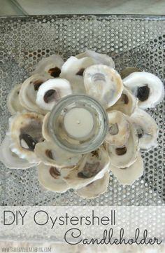 Use oyster shells to create home decor ~ easy to follow tutorial