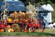 The Comptonales, Fall Festival, Compton, Qc (October) - Les Comptonales, fête d'automne, Compton Qc. (Octobre) - Eastern Townships - Cantons-de-l'Est - Estrie