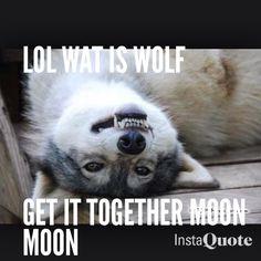 Moon moon...