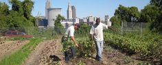 #Cleveland Crops: Training People with Disabilities to #Farm
