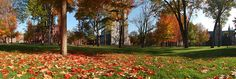 New England fall at Bowdoin College.