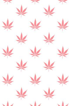Wallpaper Iphone - chrisbmarquez: Peachy Cannabis Pot Leaf Pattern Art Print by. Cannabis Wallpaper, Weed Wallpaper, Pink Wallpaper Iphone, Iphone Background Wallpaper, Aesthetic Iphone Wallpaper, Iphone Wallpapers, Bedroom Wall Collage, Photo Wall Collage, Dope Wallpapers