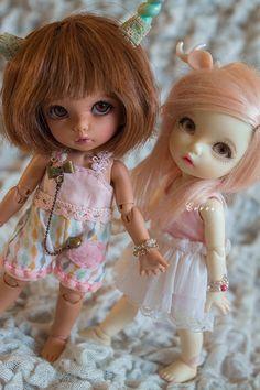 Cookie & Melba (Pukifee Ante) par Margaux