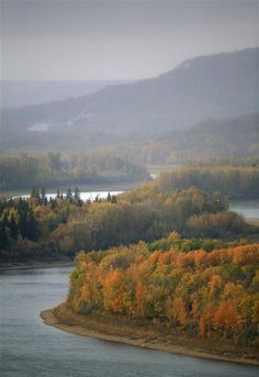 Boreal Forest in AlbertaBoreal forest and Peace River on a misty morning in northern Alberta, Canada. Photographer: Jiri Rezac / Greenpeace