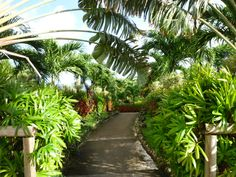 Hotel Mariana Resort Spa