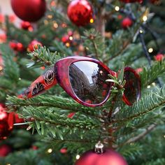 merry christmas Lafont, Merry Christmas, Sunglasses, Instagram, Merry Little Christmas, Wish You Merry Christmas, Sunnies, Shades, Eyeglasses