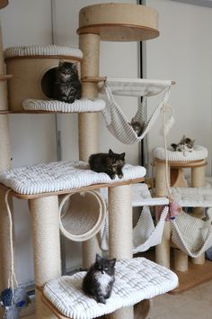 RUFI cat tree with Saskia van Rijn , Salomé, Talulah, Querido & Raïju - Cats - Katzen Cat Tree House, Cat House Diy, Diy Cat Tower, Cat Gym, Cat Playground, Playground Design, Cat Towers, Cat Condo, Pet Furniture