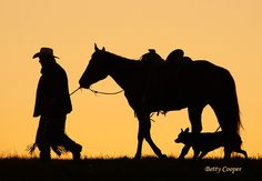 Cowboy and his horse