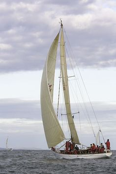 The Laurent Giles one off sloop 'Cetewayo' competing in the Round the Island Race.