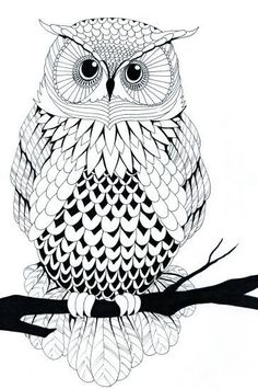 Owl Free Printable Coloring Pages