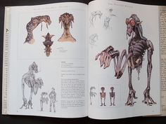 The Art of Star Wars Episode I: The Phantom Menace by Parka81, via Flickr Terryl Whitlatch, Environment Painting, The Phantom Menace, Star Wars Episodes, Creature Design, Book Review, Amazing Art, Concept Art, Character Design