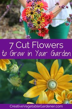Grow cut flowers in your garden this season and harvest not just vegetables, but beautiful flower bouquets to spread throughout your home. #gardening #flowers #gardendesign