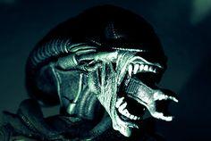 Xenomorph - Alien exposed! http://www.tashmag.com/#!alien-exposed/cdt2