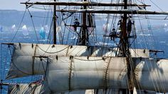 Sailboats, well how would you like to hang around with these guys?  lol...