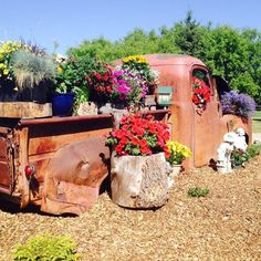 Old truck turned into beautiful flower bed