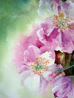 blossom watercolor by Yvonne Harry