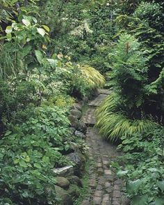 A fired-brick pathway meanders through a shade garden. Cascading Japanese forest grass blurs the path's edges.