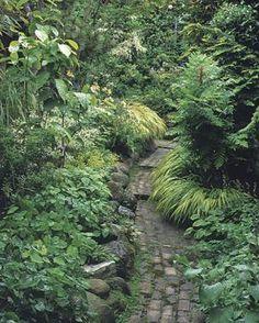 A Tale of Two Side Yards   Fine Gardening