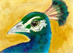 ACEO WONDERS2017 Peacock head Alcohol Ink Bird Painting realistic Penny StewArt #Realism