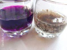 опыты по химии: марганцовка и перекись водорода