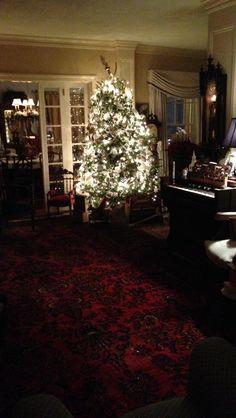 Living room with ice tree