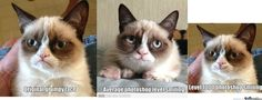 Grumpy Cat Smiling | Grumpy Cat Photoshop Smiling - Meme Center