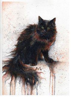 Cats by Braden Duncan.