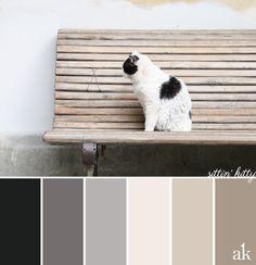 a neutral cat-inspired color palette // soft black, gray, tan, white fur // #BoboliGardens
