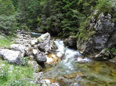 Bucegi mountains Romania, Beautiful Places, Country, Water, Outdoor, Green, Gripe Water, Outdoors, Rural Area