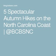 5 Spectacular Autumn Hikes on the North Carolina Coast   @BCBSNC
