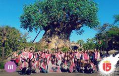 #lilaF16 en Animal Kingdom! Y el árbol más lindo que podés ver en tu vida!