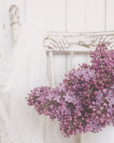 Start to Finish. Lilacs #lilac #lavender #color