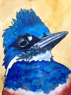 Kingfisher.  anitasartgallery.com