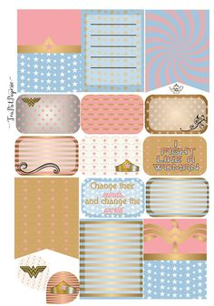 Woner Woman Theme decorative planner stickers for ECLP IWP