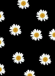 Image via We Heart It http://weheartit.com/s/h5cDRSWN #background #flowers #wallpapers