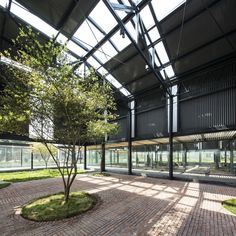 Image 16 of 34 from gallery of Brown Sugar Factory / DnA. Photograph by Ziling Wang Form Architecture, Large Gazebo, Steel Structure Buildings, Sugar Factory, Gambrel, New Community, Nature Reserve, The Locals, Brown Sugar