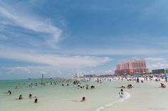 Things to do in Clearwater, FL | MHNSaves.com