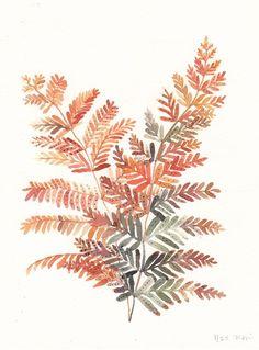 Autumn Fern - Limited Edition Print
