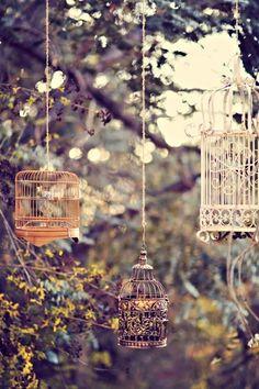 Re using birdcages in the garden