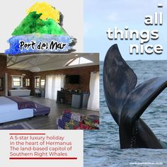Book one of Port del Mar Guesthouse's comfortable family rooms or a stylish deluxe room for two.