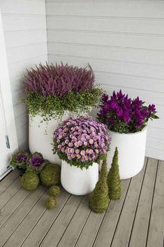 50 Simple Container Garden Flower Ideas | Justaddblog.com  #gardening  #containergarden