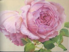 GARY JENKINS - 105098721814206898449 - Picasa Web Albums Gary Jenkins, Garden Painting, Perfect Pink, Realistic Drawings, Painting Inspiration, Flower Art, Peonies, Art Gallery, Decoupage