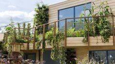 The Greening Grey Britain Garden