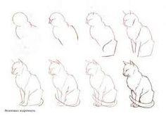 Dibujar paso a paso gato