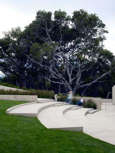 Nueva School - ландшафтный дизайн и благоустройство территории школы в США